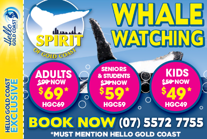 Discount Coupon –Spirit of Gold Coast Whale Watching