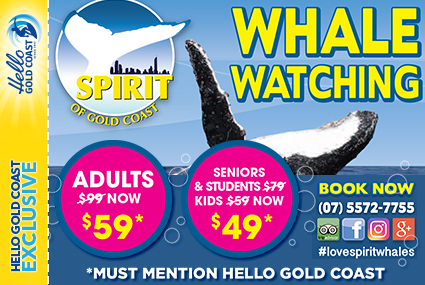 Discount Coupon – Spirit of Gold Coast Whale Watching