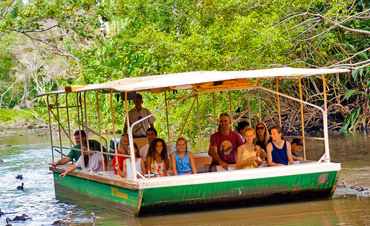 Wildlife Boat Cruise at Tropical Fruit World