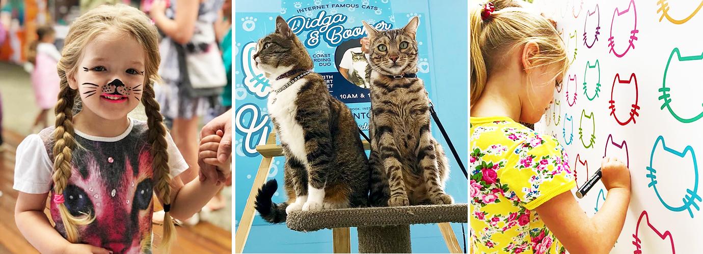 Cat Carnival Exhibitors at Carrara Markets