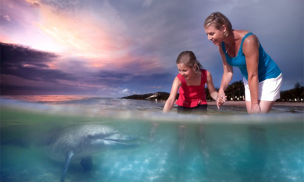 Discount Water Sports and Activities Gold Coast, Tangalooma Dolphin Adventure Tour